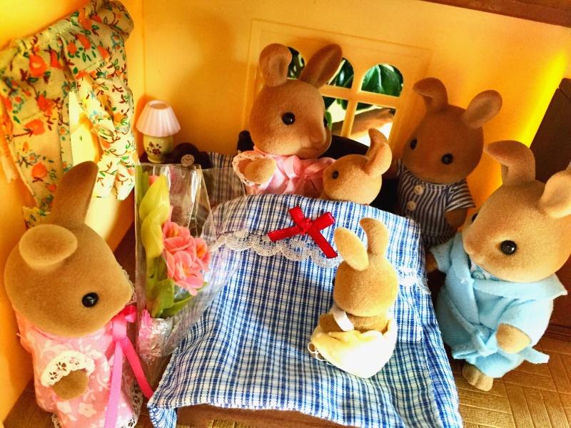 Happyland ⭐️, village de Marionnettes et ses filles - Page 4 Image312