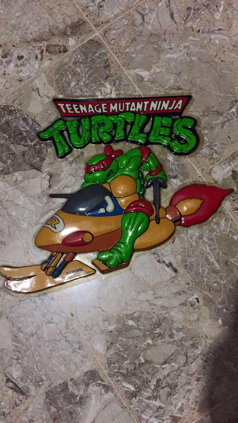 Lotto Turtles Img_9351