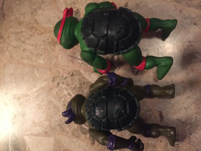Lotto Turtles Img_9352