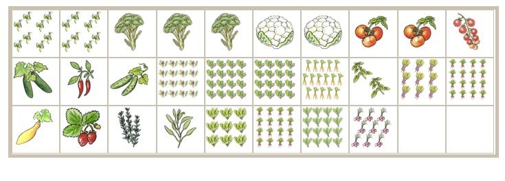 Our tentative 10x3 garden plan!  Screen11