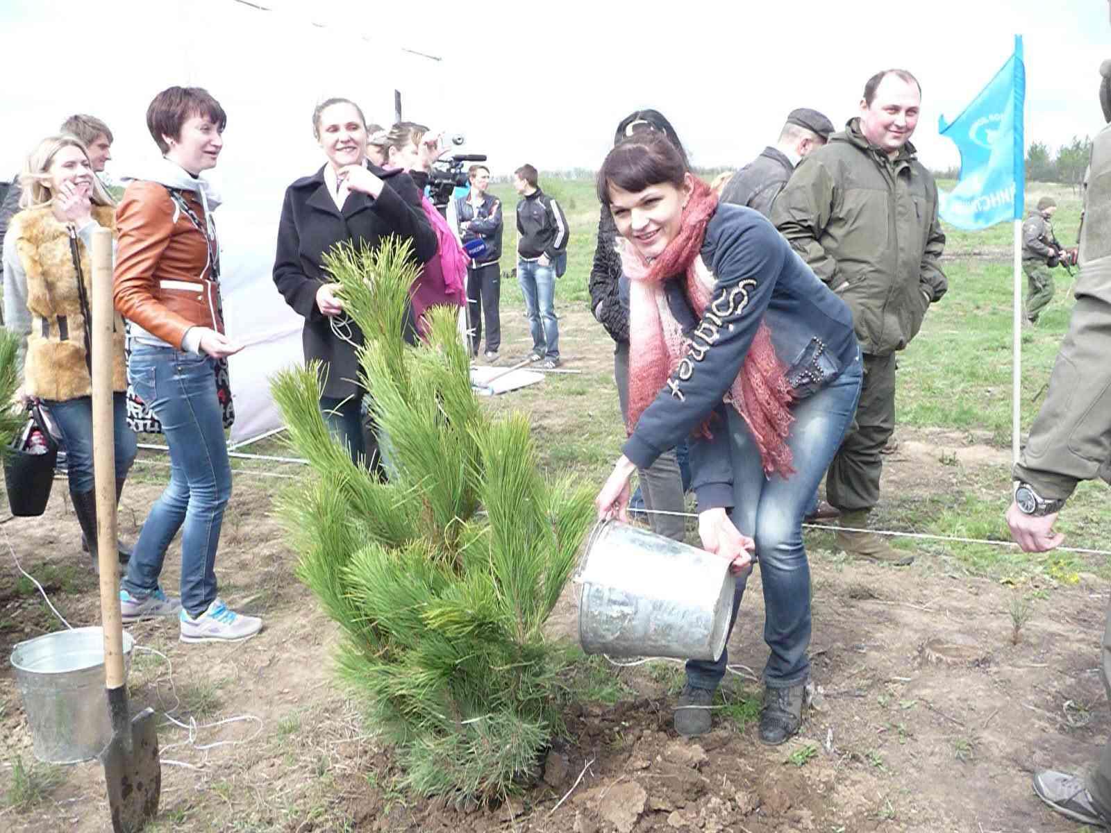 Сосновый бор в виде надписи «ДНР» высажен на месте леса, сожженного ВСУ 9011