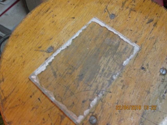 Construction d'une fourmilière pour des crematogaster scutellaris. Img_7320