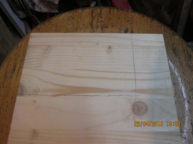 Construction d'une fourmilière pour des crematogaster scutellaris. Img_7322