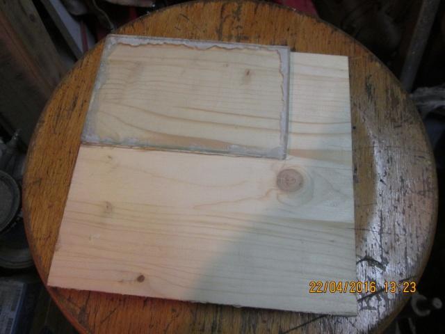 Construction d'une fourmilière pour des crematogaster scutellaris. Img_7323