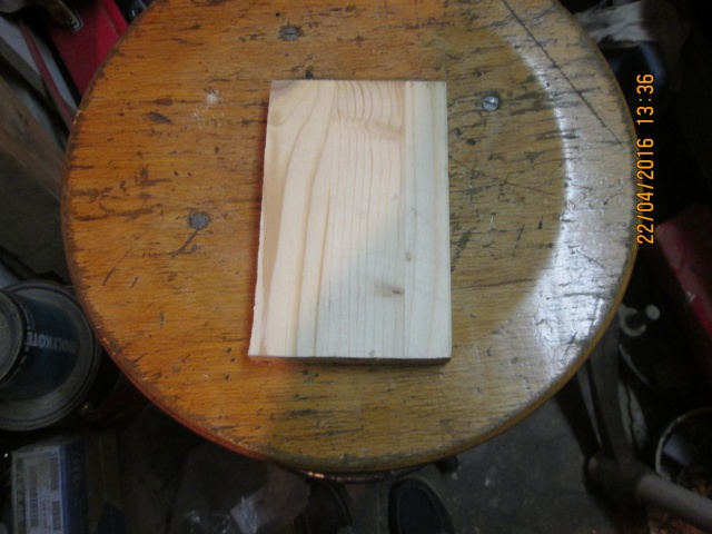 Construction d'une fourmilière pour des crematogaster scutellaris. Img_7430
