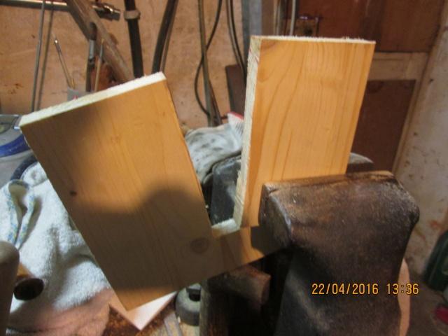Construction d'une fourmilière pour des crematogaster scutellaris. Img_7431