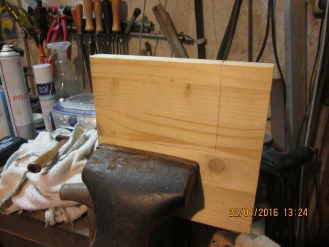 Construction d'une fourmilière pour des crematogaster scutellaris. Img_7433