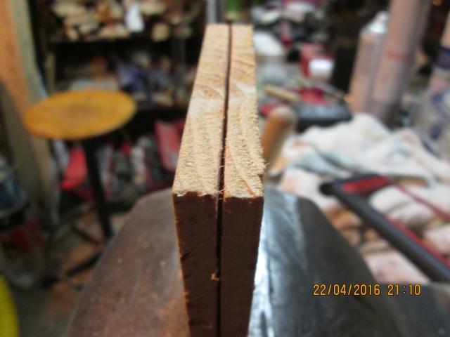 Construction d'une fourmilière pour des crematogaster scutellaris. Img_7436