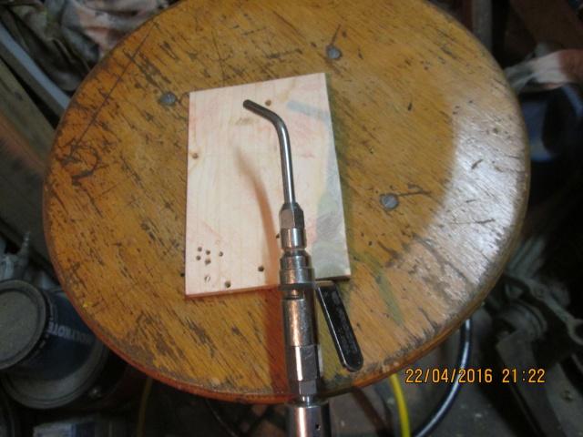 Construction d'une fourmilière pour des crematogaster scutellaris. Img_7438