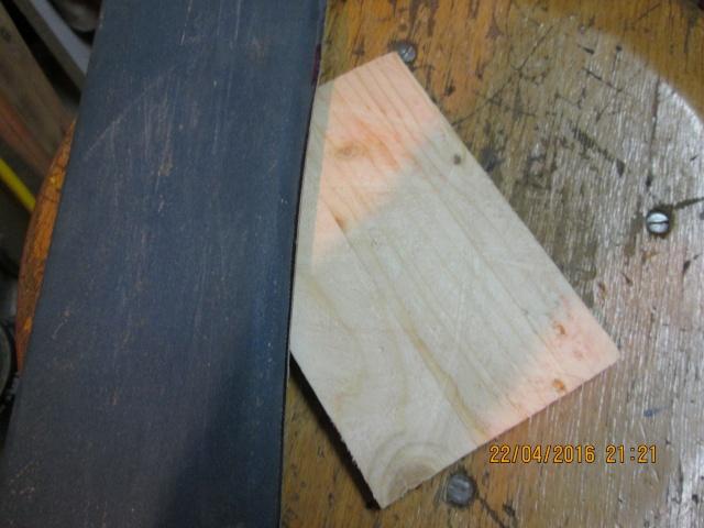 Construction d'une fourmilière pour des crematogaster scutellaris. Img_7439