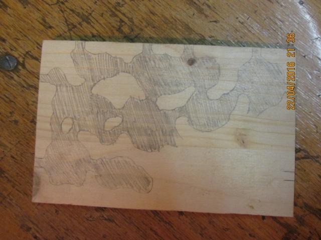 Construction d'une fourmilière pour des crematogaster scutellaris. Img_7442