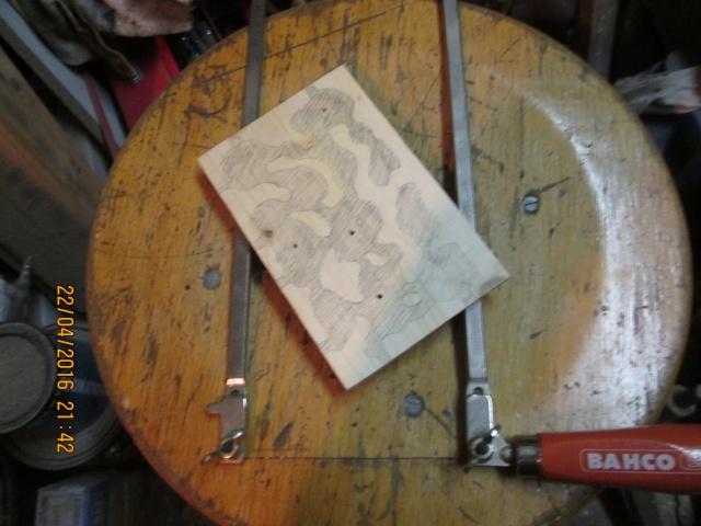 Construction d'une fourmilière pour des crematogaster scutellaris. Img_7445