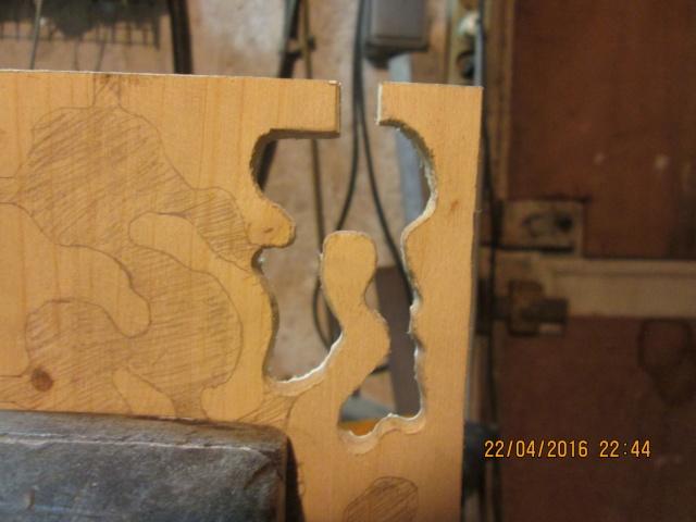Construction d'une fourmilière pour des crematogaster scutellaris. Img_7447