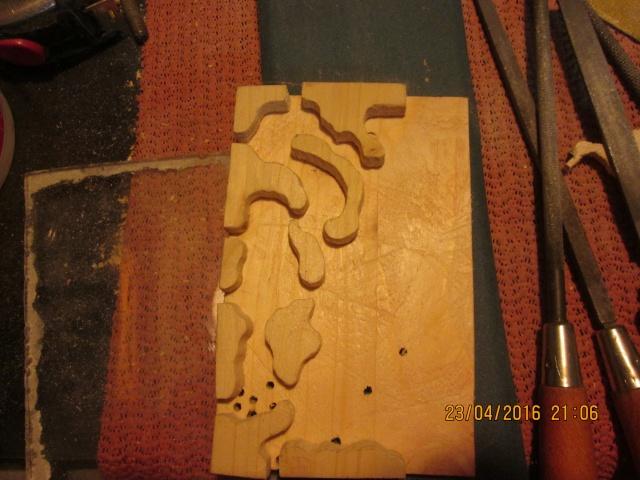 Construction d'une fourmilière pour des crematogaster scutellaris. Img_7451