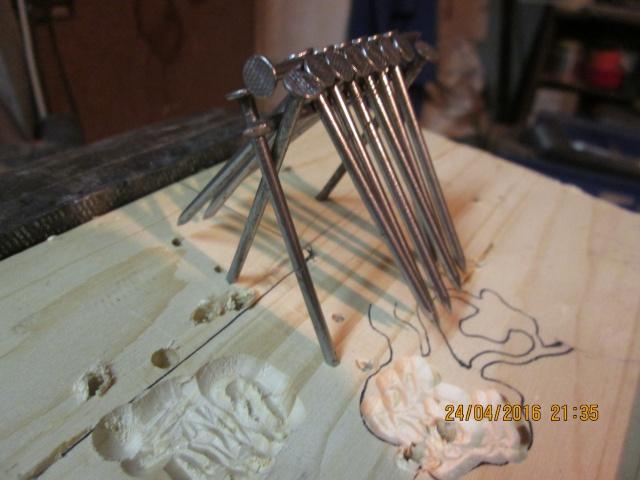 Construction d'une fourmilière pour des crematogaster scutellaris. Img_7453