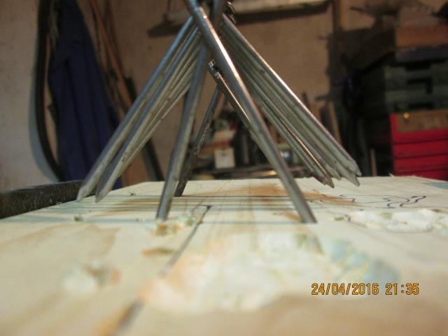 Construction d'une fourmilière pour des crematogaster scutellaris. Img_7458