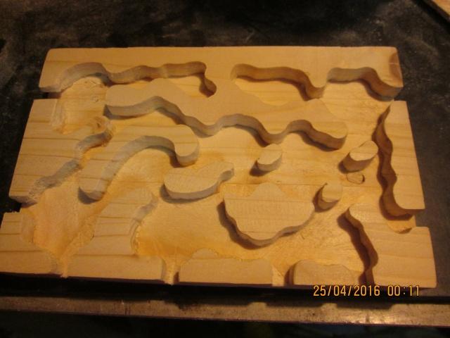 Construction d'une fourmilière pour des crematogaster scutellaris. Img_7467