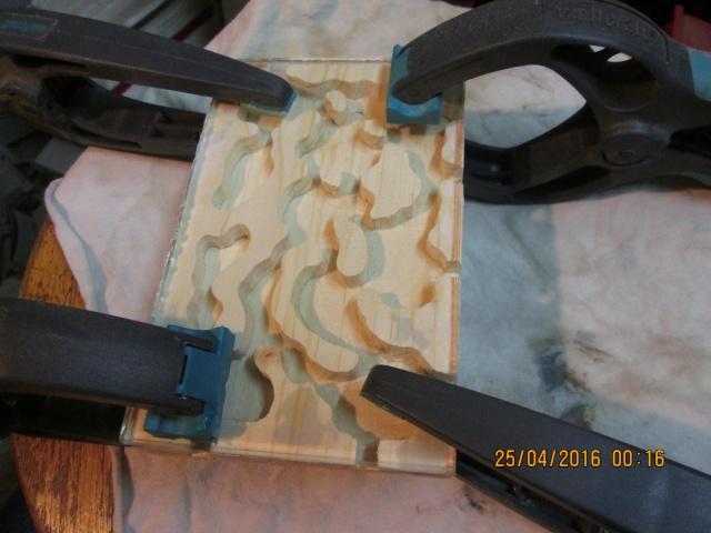 Construction d'une fourmilière pour des crematogaster scutellaris. Img_7510