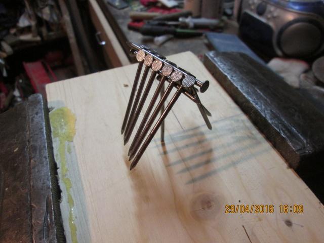 Construction d'une fourmilière pour des crematogaster scutellaris. Img_7524