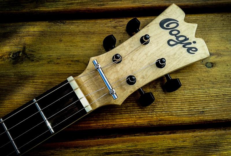 Oogie Guitars 213