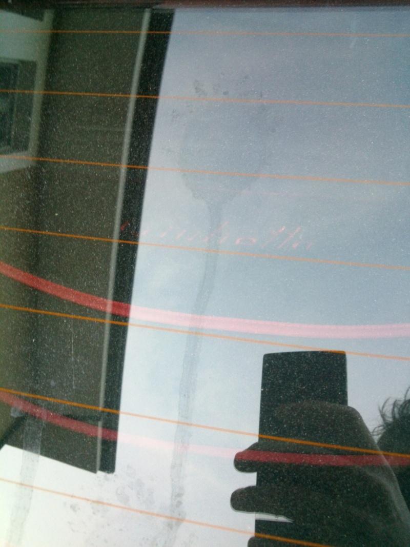 Problema macchie su lunotto e carrozzeria Dsc_0711