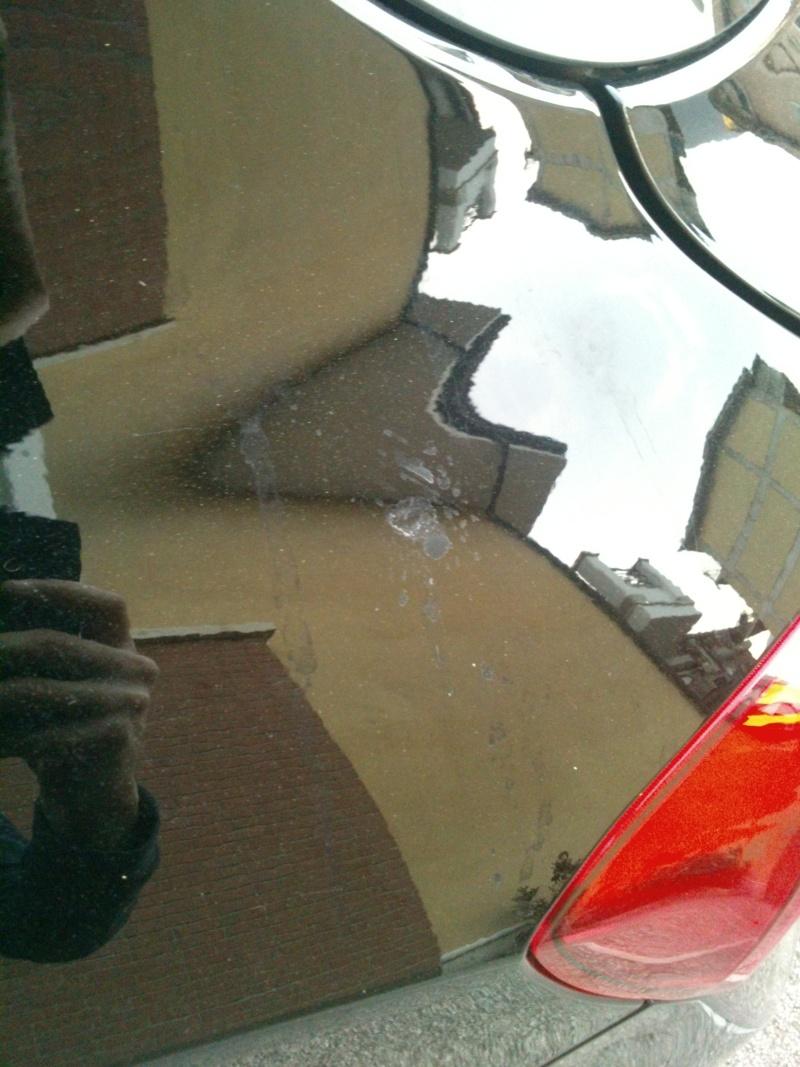 Problema macchie su lunotto e carrozzeria Dsc_0713