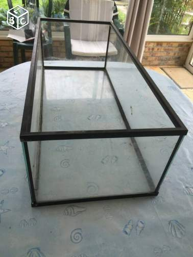 Aqua-terrarium pour 2 sternotherus 8b74af10