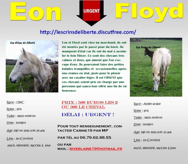 Dpt19, 24 et 23 ans, EON (DCD) et FLOYD, ONC sauvés par CécileB (Juin 2016) Les_cr32