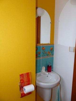 Conseils au sujet d'un WC aux couleurs ... trop .... éclatantes P1130921