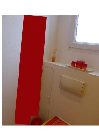 Conseils au sujet d'un WC aux couleurs ... trop .... éclatantes Simula12