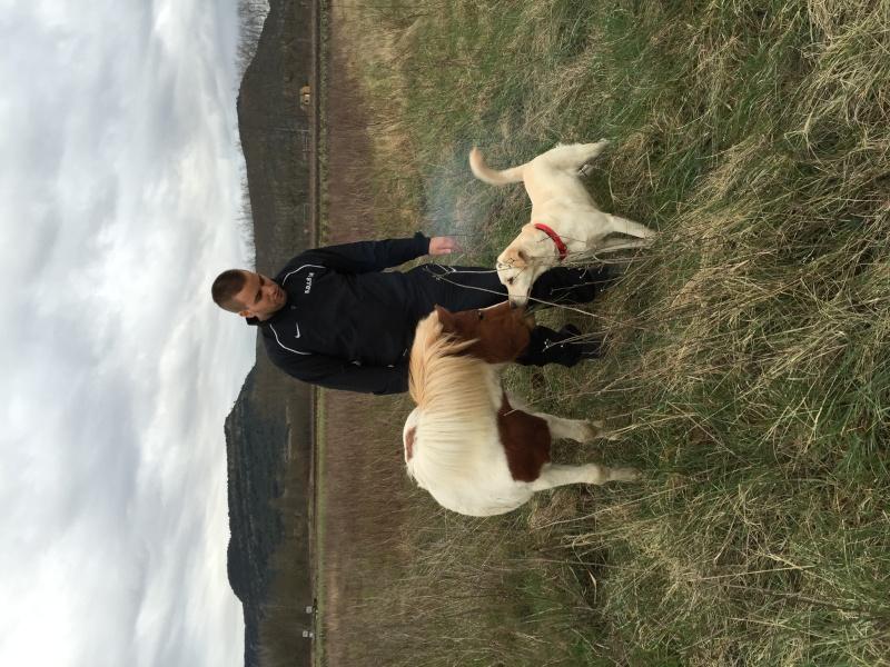 Ponette Shetland Img_6710