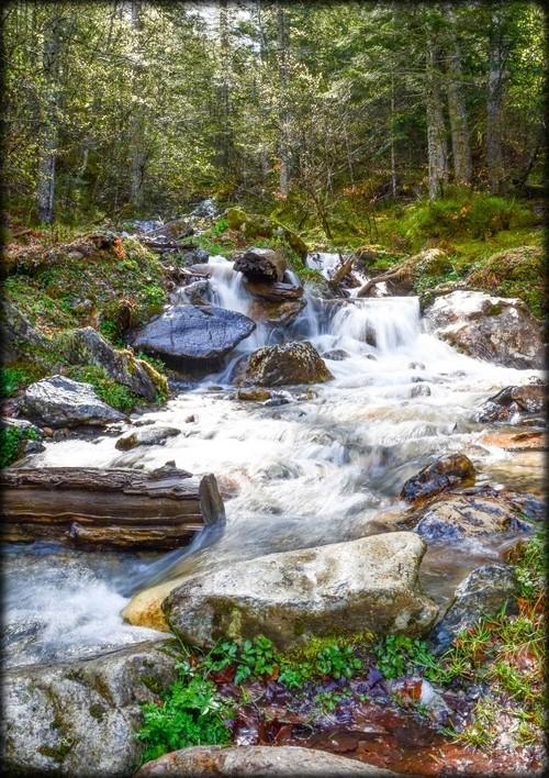 Petit ruisseau 410