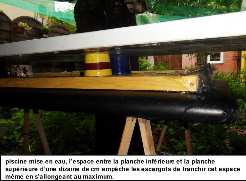 Piscine anti-escargots pour culture dans un jardin 513