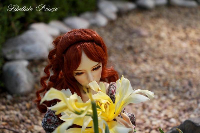 BJD Photography by Libellule Img_5119