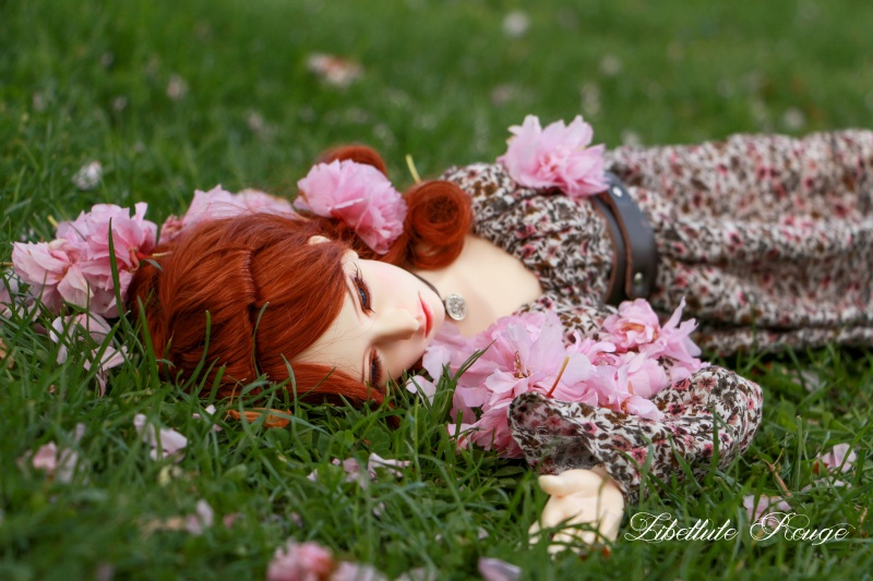 BJD Photography by Libellule Img_5123