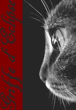 Mini Kit Cat Mag #2 Vava10