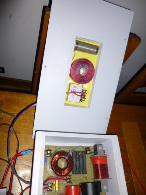 JBL 4350 A Mono et bi amplifiés - Page 3 P1000511