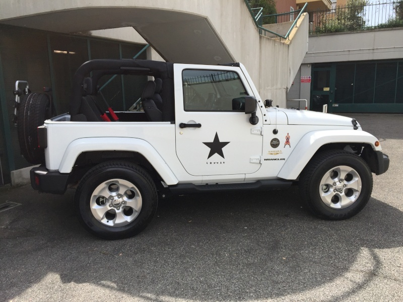 Bowie's Wrangler by Miw Image10