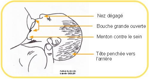 position de bebe pendant l'allaitement  Positi10