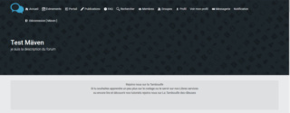 "Bien comprendre le template ""overall_header"" Affich15"