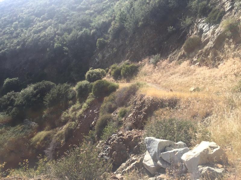 Trails in San Luis Obispo?  Img_6310