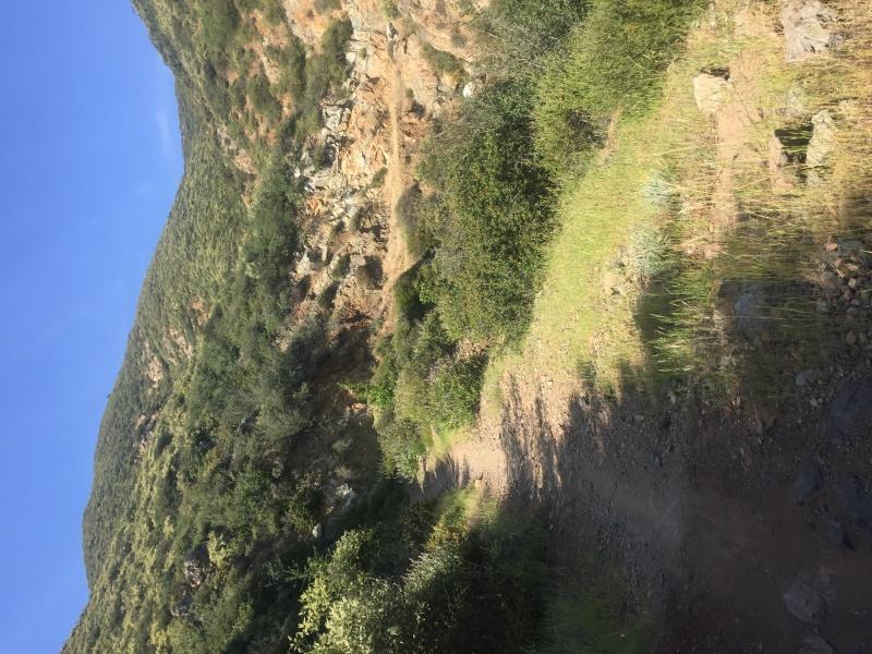 Trails in San Luis Obispo?  Img_6311