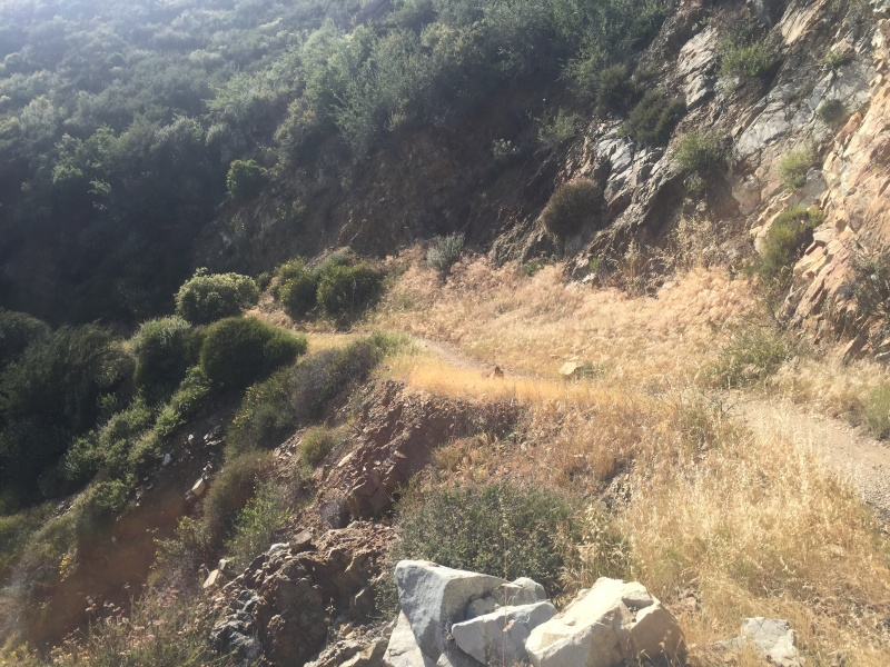 Trails in San Luis Obispo?  Img_6312
