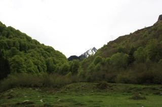 Hautes Pyrénées  12520111