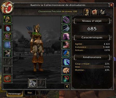 Chasseur Precision Legion Feuill21