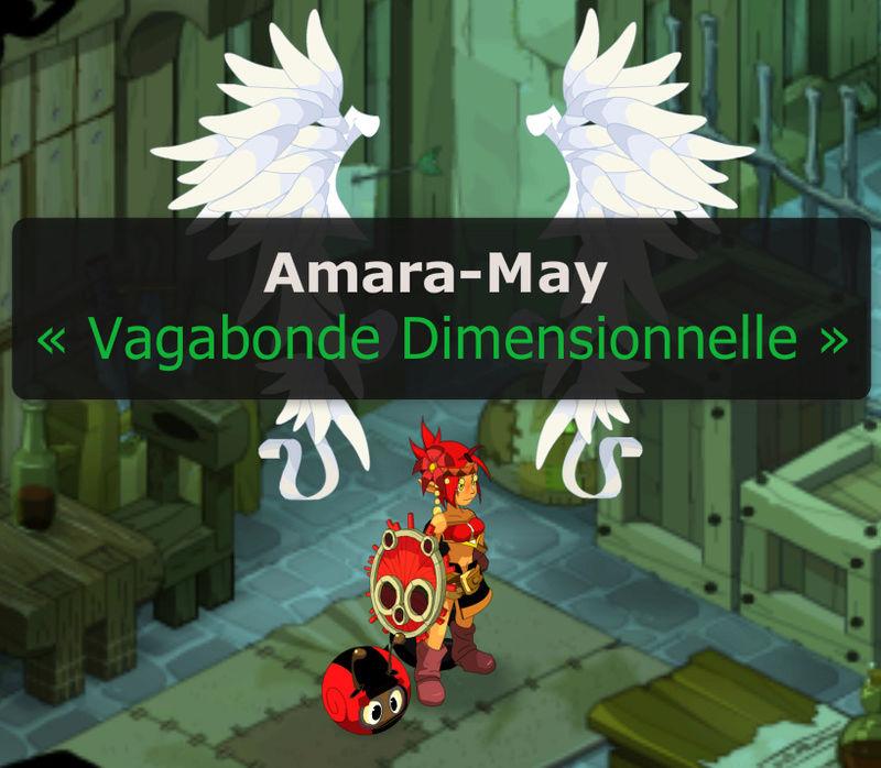 Candidature Amara Sans_t10