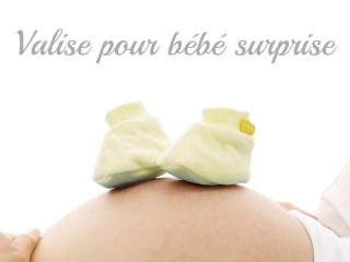Valise de maternité Valise11