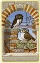 Carte 12 Les oiseaux 12_ois10
