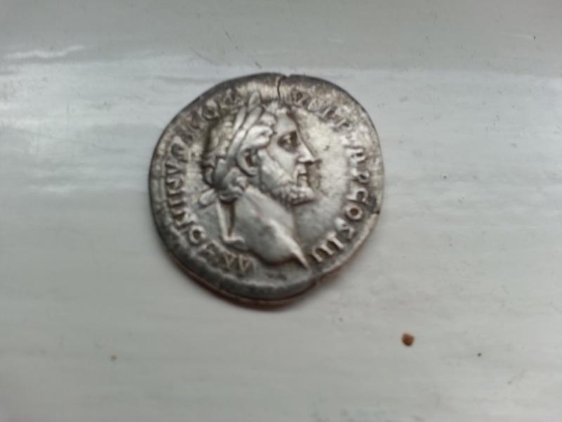 romaine vraie ou fausse? Piece_10