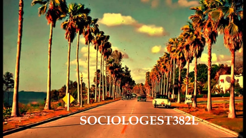 sociologest382L
